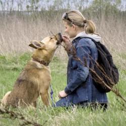 Opiekun zwierząt Halina M. Wrocław