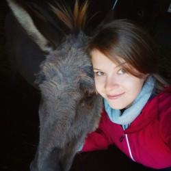Opiekun zwierząt Kaja  F. Wrocław