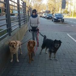Opiekun zwierząt Dorota Z. Warszawa