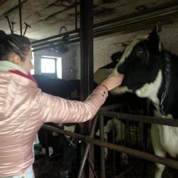 Opiekun zwierząt Marta P. Gdańsk