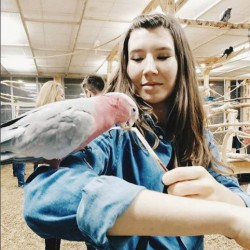 Opiekun zwierząt Martyna J. Gdańsk