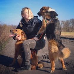 Opiekun zwierząt Sylwia K. Poznań
