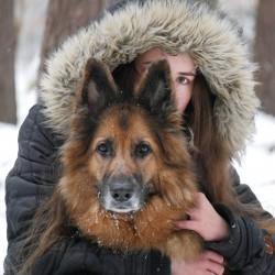 Opiekun zwierząt Emilia K. Gdańsk