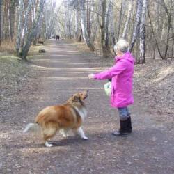 Opiekun zwierząt Grazyna G. Gdańsk