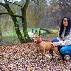 Opiekun zwierząt Patrycja K. Łódź, Poland
