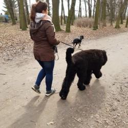 Opiekun zwierząt Joanna M. Gdańsk