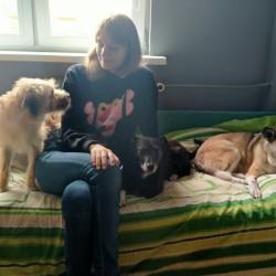 Opiekun zwierząt Julia S. Bydgoszcz