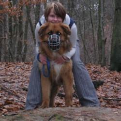 Opiekun zwierząt Monika N. Gdynia