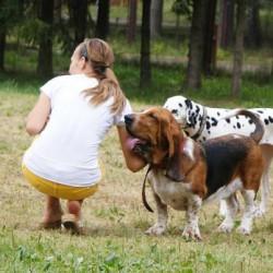 Opiekun zwierząt Joanna  Lublin