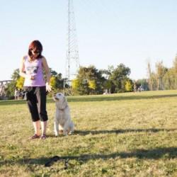 Opiekun zwierząt Justyna K. Chorzów