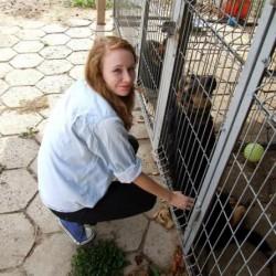 Opiekun zwierząt Justyna W. Kraków